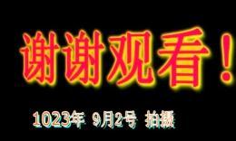 丁建女博彩官网 没有共产党就没有新中国 原创