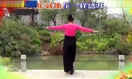 湘粤博彩官网快乐广场〔歌词字幕带背面演示〕