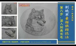 刘晓军/画虎技法视频学习班刘晓军素描狼头9 画浅毛背景整理完成