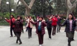 襄阳公园博彩官网 玫瑰花儿香