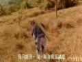 6聚宝28论坛