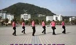 张化火/梅花广场舞摇摆歌 健身舞10713个月前