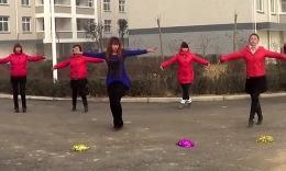 花蝴蝶舞蹈教学分解_蔡依林《花蝴蝶》完整舞蹈分解教学播视网新