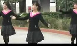 广场舞蹈视频大全 广场舞教学 广场舞-最新广场舞视频(2)